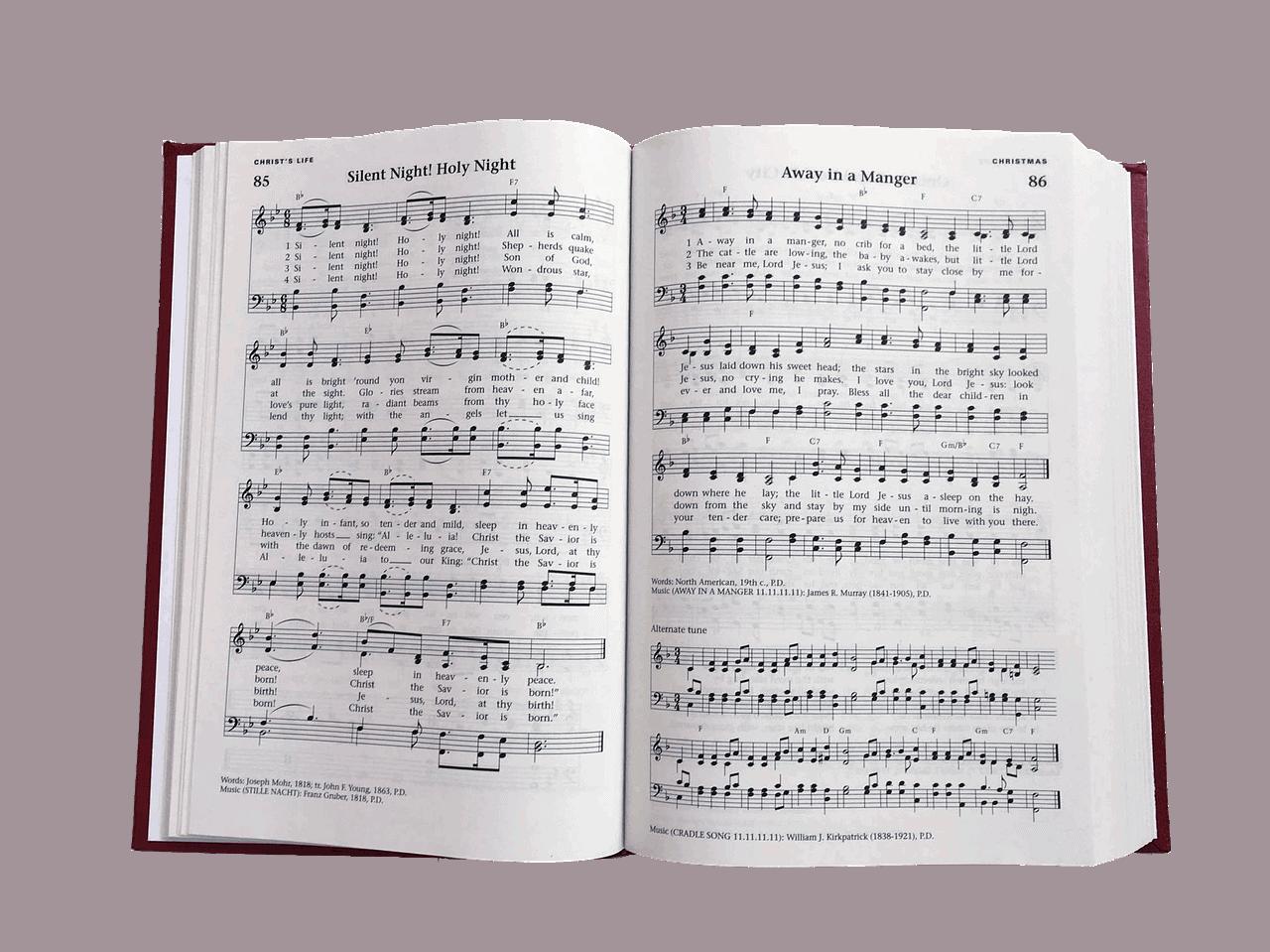 Musikk – forslag til soloinnslag
